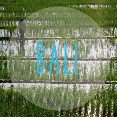 Explore - Bali